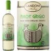 Candoni Organic Pinot Grigio Veneto IGT 2019 (Italy)