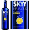 Skyy Citrus Infusions Vodka 750ml Rated 90-95WE BEST BUY