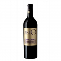 BriO de Cantenac Brown Margaux 2005