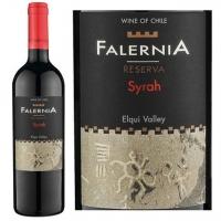 Vina Falernia Elqui Valley Reserva Syrah 2012 (Chile)