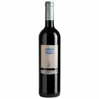 Vall Llach Embruix de Vall Llach DOQ Priorat 2014 (Spain) Rated 90WS