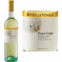 Bottega Vinaia Trentino Pinot Grigio 2016